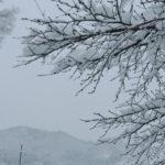 冬の旅行でリフレッシュ