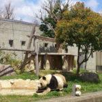 GW最終日の動物園