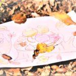 秋の食べ物2選+1